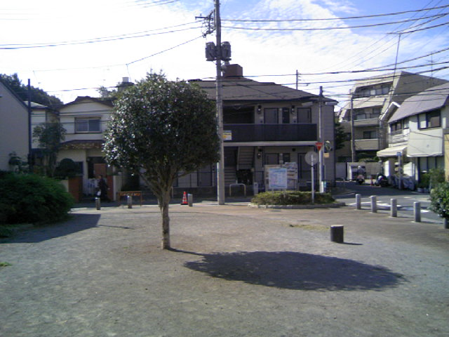 TS383390.JPG
